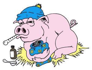 Illustration of pig with Swine Flu.